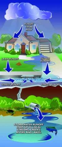 Diagram: Runoff from roof goes to lawn and gutter, into the street and eventually into local streams, creeks, rivers and lakes.